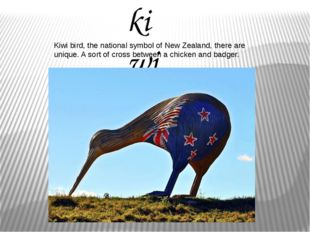 kiwi Kiwi bird, the national symbol of New Zealand, there are unique. A sort