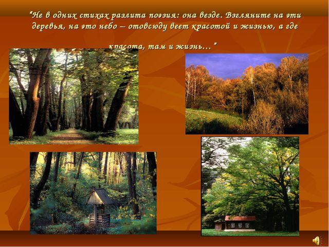 """""""Не в одних стихах разлита поэзия: она везде. Взгляните на эти деревья, на эт..."""