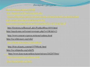 Интернет-ресурсы: http://100dorog.ru/photo/45488/ http://nashural.ru/Mesta/ya