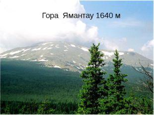 Вопрос № 6 Наивысшая точка Уральских гор на территории Башкортостана Гора Яма