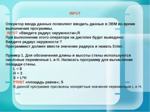 Оператор ввода данных позволяет вводить данные в ЭВМ во время выполнения прог