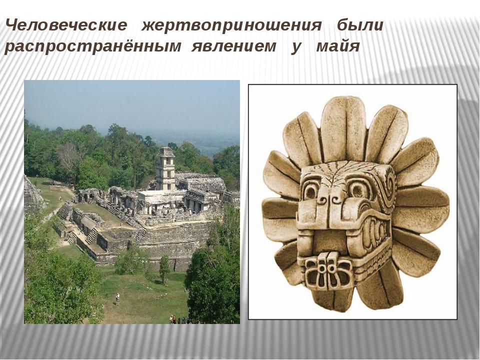 Человеческие жертвоприношения были распространённым явлением у майя