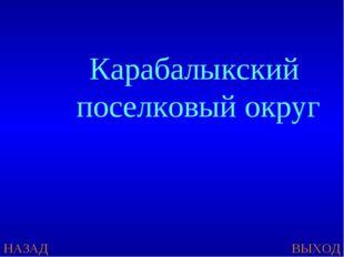 НАЗАД ВЫХОД Карабалыкский поселковый округ