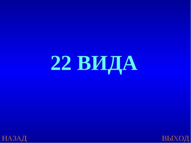 НАЗАД ВЫХОД 22 ВИДА