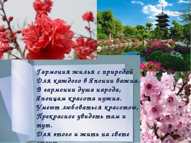 Праздник цветения сакуры САКУРА - национальный символ Японии, которому посвя...