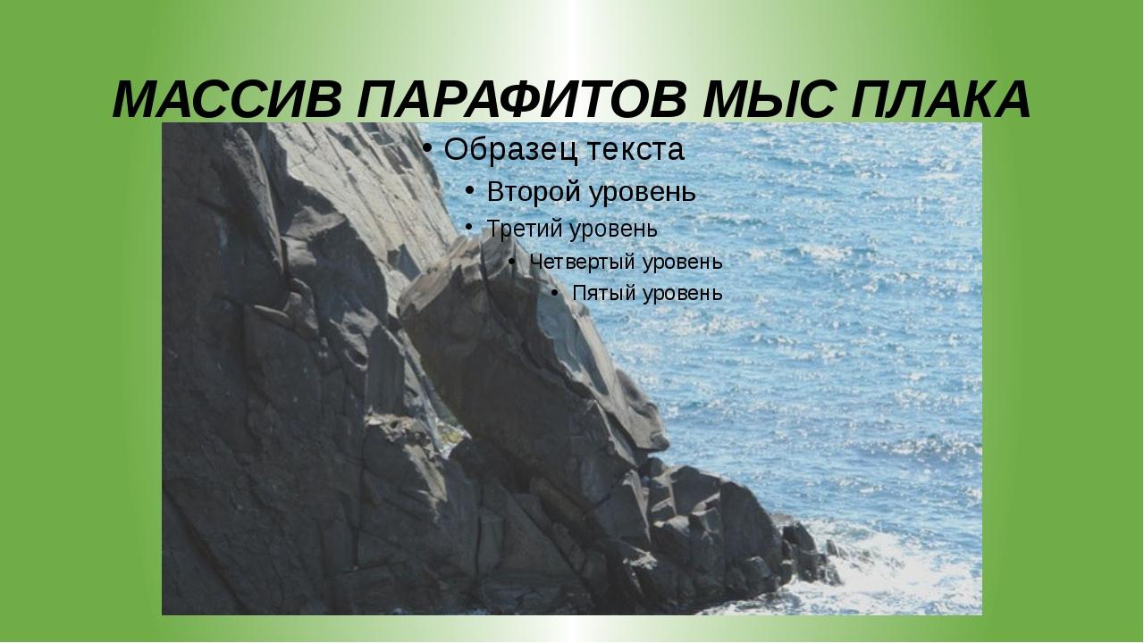 МАССИВ ПАРАФИТОВ МЫС ПЛАКА