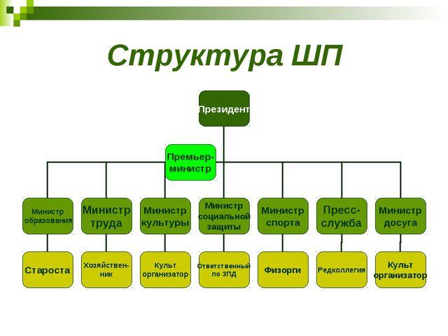 Структура ШП