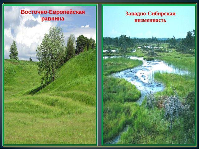 Восточно-Европейская равнина Западно-Сибирская низменность