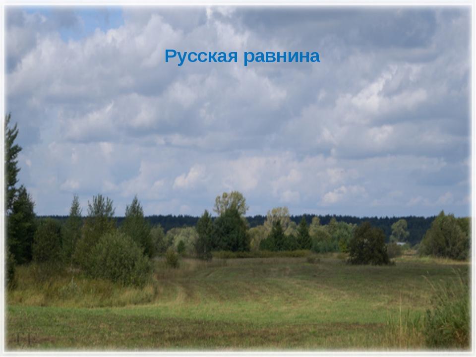 Русская равнина