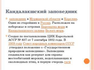 Кандалакшский заповедник заповедниквМурманской областииКарелии. Один из