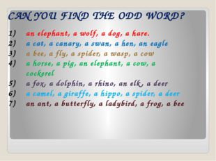 CAN YOU FIND THE ODD WORD? an elephant, a wolf, a dog, a hare. a cat, a cana