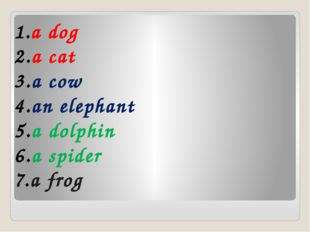 a dog a cat a cow an elephant a dolphin a spider a frog