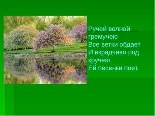 Ручей волной гремучею Все ветки обдает И вкрадчиво под кручею Ей песенки поет.