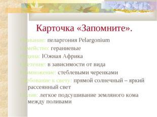 Карточка «Запомните». Название: пеларгония Pelargonium Семейство: гераниевые