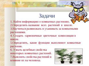 Задачи 1. Найти информацию о комнатных растениях. 2.Определить название всех