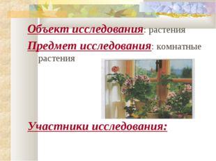 Объект исследования: растения Предмет исследования: комнатные растения Участн