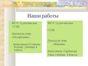 Наши работы МОУ Худоеланская СОШ Доклад на тему «Пеларгония» Выполнила:Устин