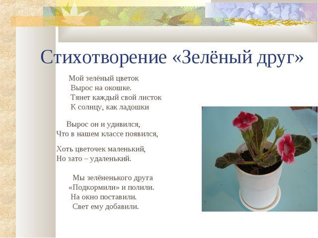 Стихотворение «Зелёный друг» Мой зелёный цветок Вырос на окошке. Тянет каждый...