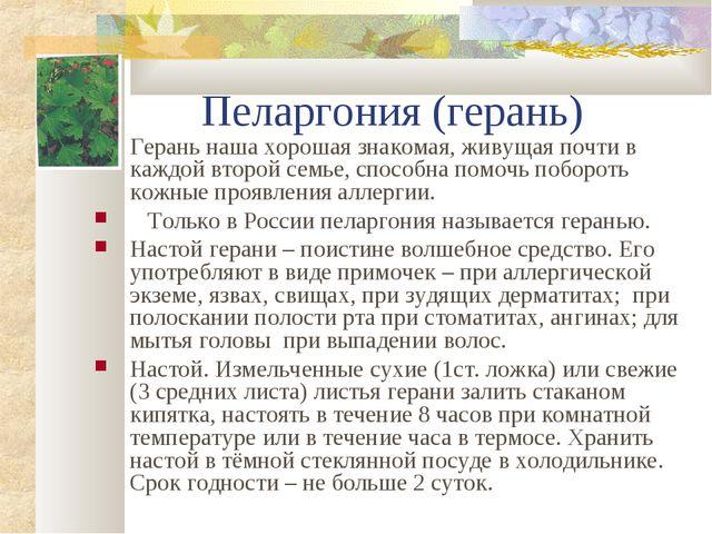 Пеларгония (герань) Герань наша хорошая знакомая, живущая почти в каждой вто...