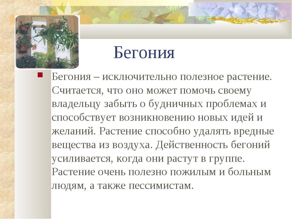 Бегония Бегония – исключительно полезное растение. Считается, что оно может...