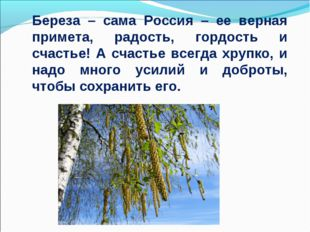Береза – сама Россия – ее верная примета, радость, гордость и счастье! А счас