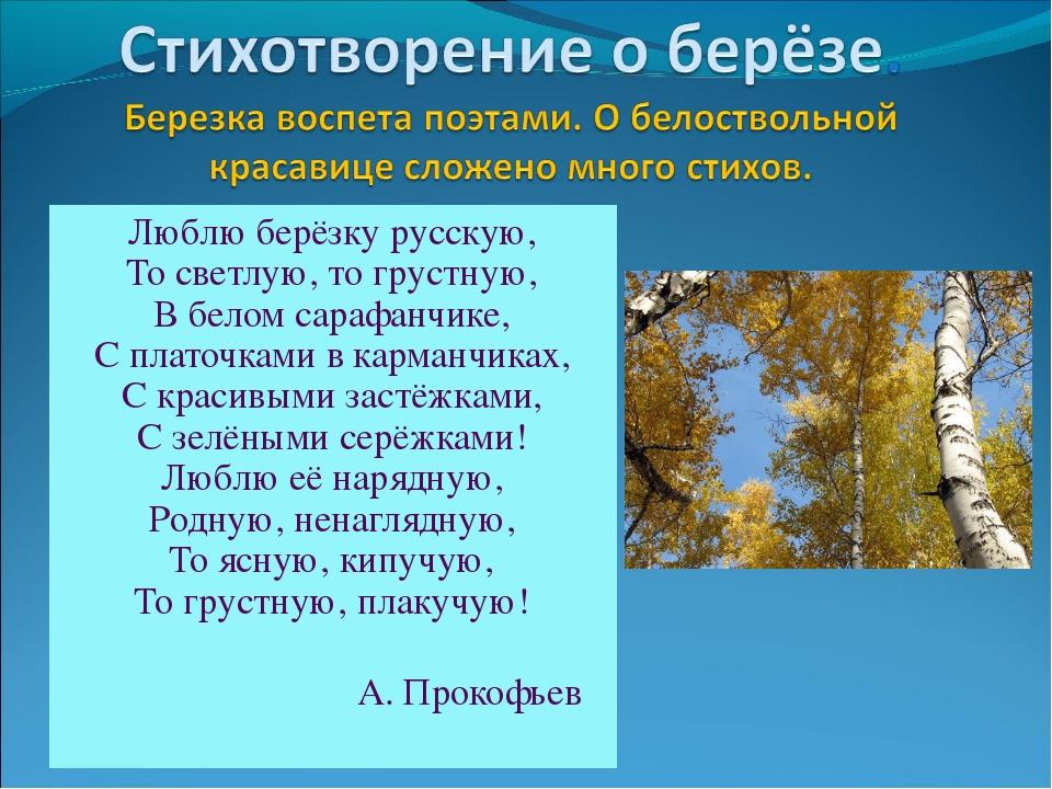 Люблю берёзку русскую, То светлую, то грустную, В белом сарафанчике, С платоч...