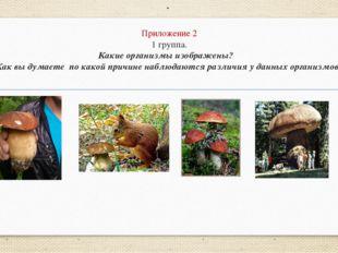 Приложение 2 1 группа. Какие организмы изображены? Как вы думаете по какой пр