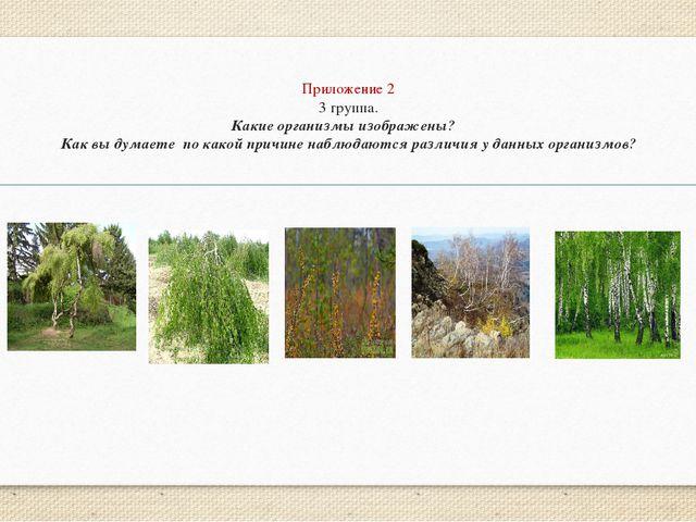 Приложение 2 3 группа. Какие организмы изображены? Как вы думаете по какой пр...