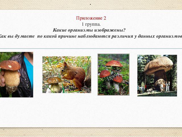 Приложение 2 1 группа. Какие организмы изображены? Как вы думаете по какой пр...
