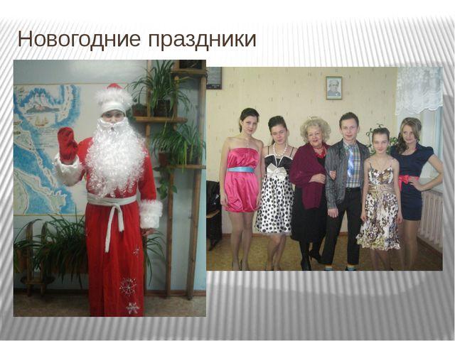 Новогодние праздники