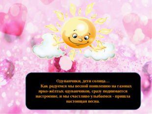 Одуванчики, дети солнца…  Как радуемся мы весной появлению на газонах я