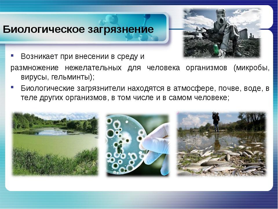 Биологическое загрязнение Возникает при внесении в среду и размножение нежела...