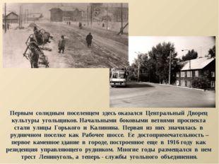 Первым солидным поселенцем здесь оказался Центральный Дворец культуры угольщи