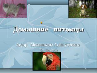 Домашние питомцы Автор Мельникова Анна ученица 2а класса