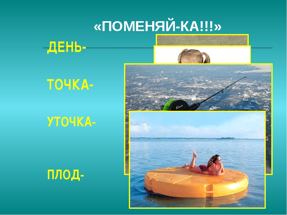 «ПОМЕНЯЙ-КА!!!» ДЕНЬ- ТОЧКА- УТОЧКА- ПЛОД-