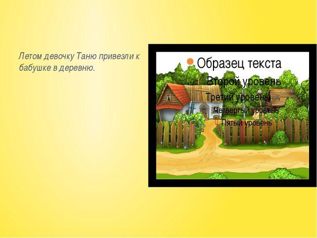 Летом девочку Таню привезли к бабушке в деревню.