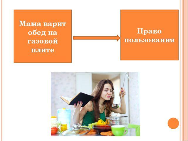 Мама варит обед на газовой плите Право пользования