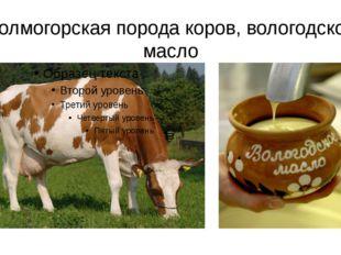 Холмогорская порода коров, вологодское масло