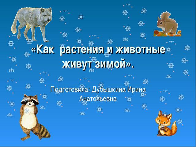 «Как растения и животные живут зимой». Подготовила: Дубышкина Ирина Анатольевна