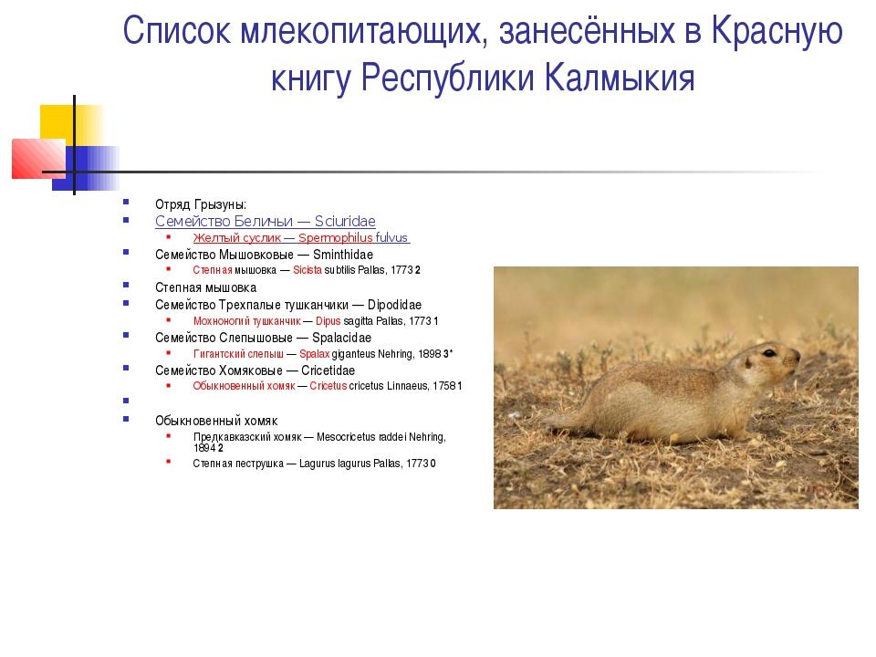 Список млекопитающих, занесённых в Красную книгу Республики Калмыкия Отряд Гр...