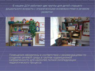 В нашем ДОУ работают две группы для детей старшего дошкольного возраста с огр