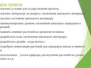 Задачи проекта: изучить условия для осуществления проекта; изучить литерату