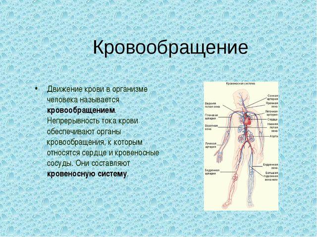 Кровообращение Движение крови в организме человека называется кровообращением...