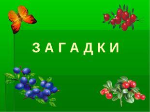 З А Г А Д К И