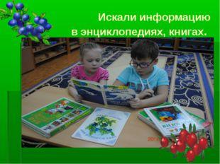 Искали информацию в энциклопедиях, книгах.