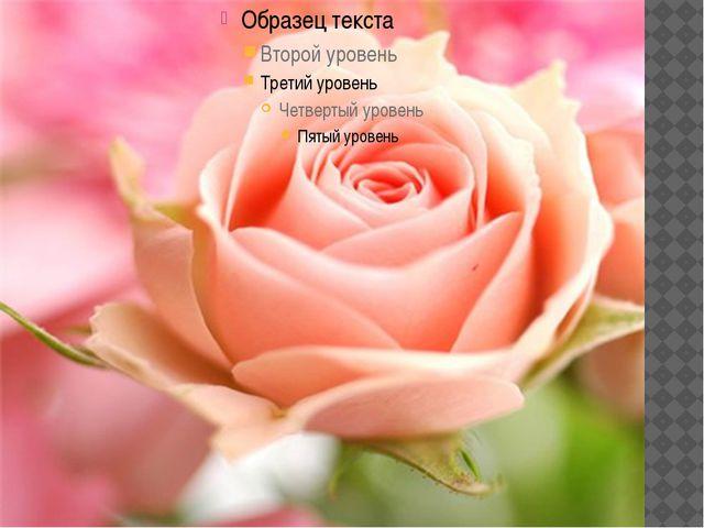 Кусраев Хадарцева