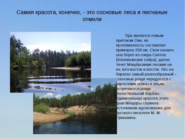 Самая красота, конечно, - это сосновые леса и песчаные отмели Пра является...
