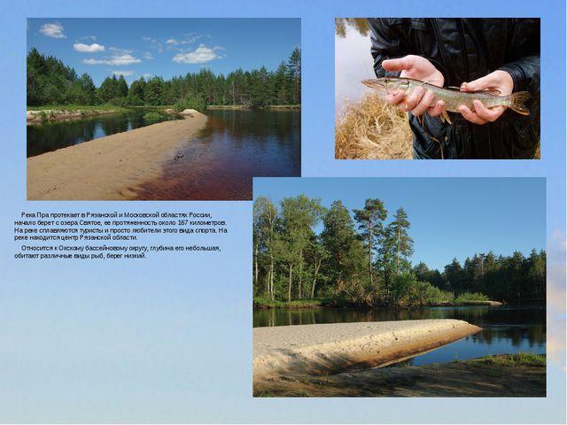 Река Пра протекает в Рязанской и Московской областях России, начало берет с...