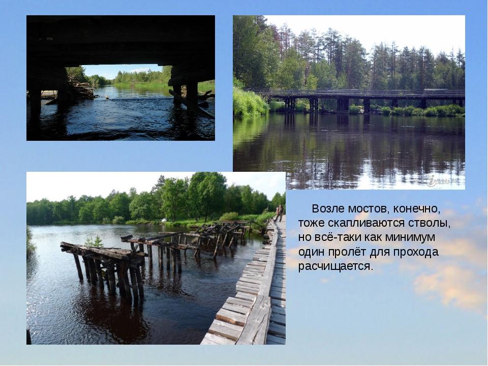 Возле мостов, конечно, тоже скапливаются стволы, но всё-таки как минимум оди...