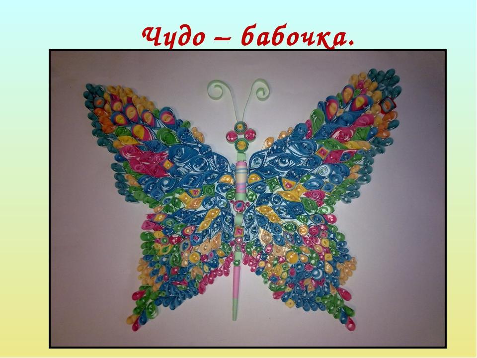 Чудо – бабочка.